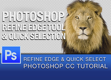 How To Use The Color Range Command In Photoshop