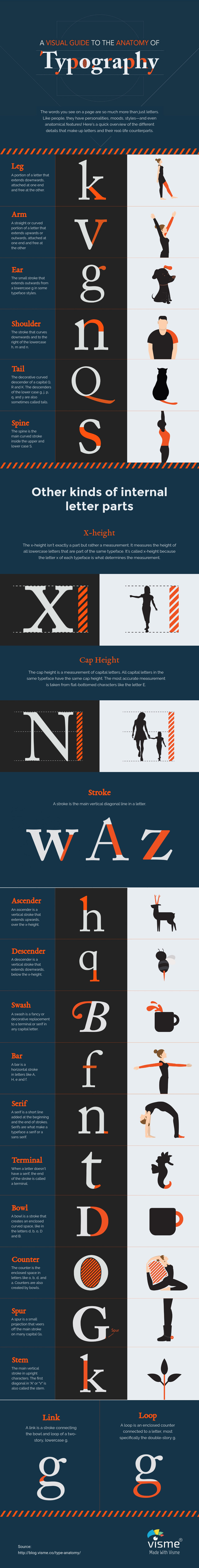 Typeface Anatomy For Font Pairing