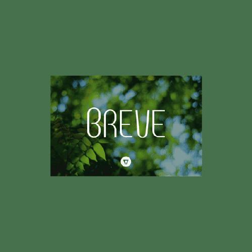 Breve Logo Font for restaurant