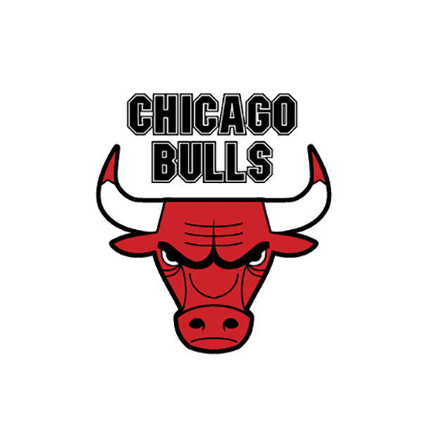 Chicago Bulls logo PNG